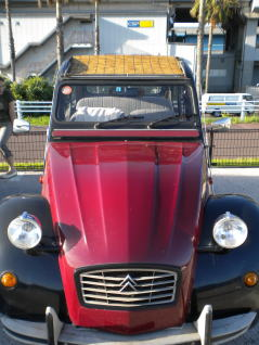 2CV すだれ 正面